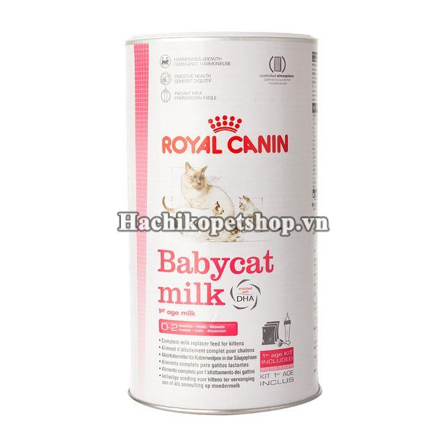 s a cho m o con royal canin babycat milk. Black Bedroom Furniture Sets. Home Design Ideas